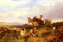 Ferreting In Surrey