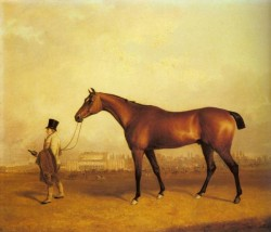 Ferneley Sr John E Emilius Winner Of The 1832 Derby