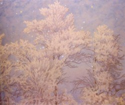 Hoar frost And Stars