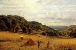 Augustus Harvesting At Luccombe Isle Of Wight