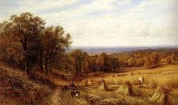 Augustus Harvest Time
