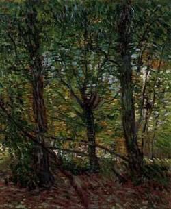 Tree and undergrowth 1887 xx van gogh museum amsterdam