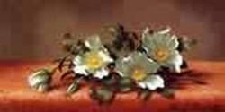 The Cherokee Rose 1889jpeg