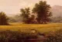 The Meadow 1871 1875jpeg