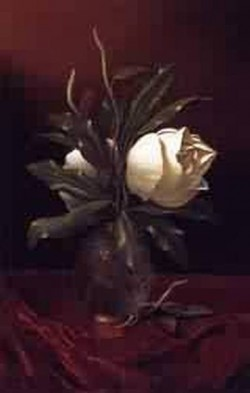 Two Magnolia Blossoms in a Glass Vase 1883 1900jpeg