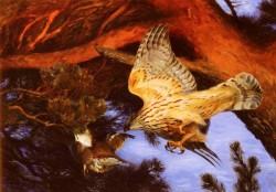 Hawk Attacking Prey