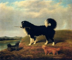 A Spaniel And Two Norfolk Terriers In A Landscape