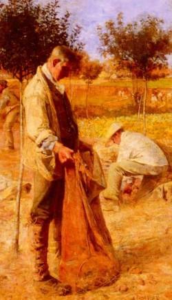 The Potato Harvesters