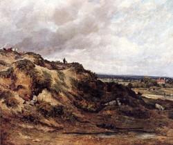 View Of Hampstaed Heath