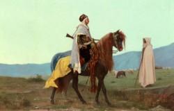 Clarence Rudolphe An Arab Horseman