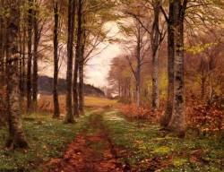 A Woodland Landscape