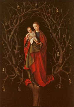 Our lady of the barren tree oak