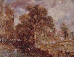 Scene on a river2