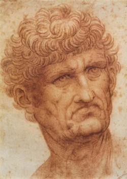 Leonardo da Vinci Head of a Man
