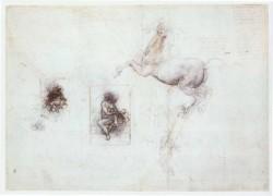 Leonardo da Vinci Studies of Leda and a horse