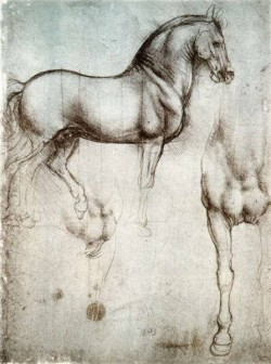 Leonardo da Vinci Study of horses