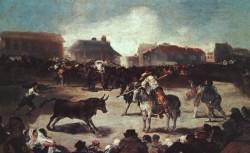Village Bullfight CGF