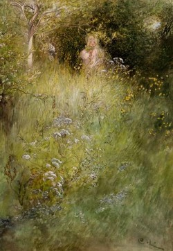 A Fairy Or Kersti And A View Of A Meadow