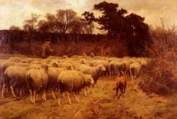 Return of the Flock