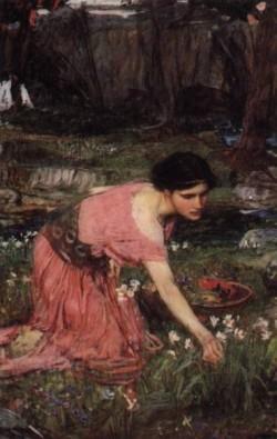 Flora JW