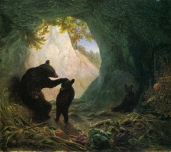 Bear And Cubs 1864