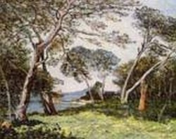 The Pines of the Ile St Morah 1912