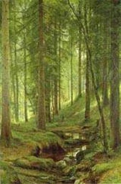 stream by a forest slope 1880 XX the museum of russian art kiev ukraine