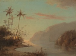 A Creek in Saint Thomas Antilles 1856
