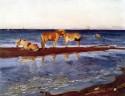 Horses on a shore