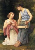 The Dove Fanciers